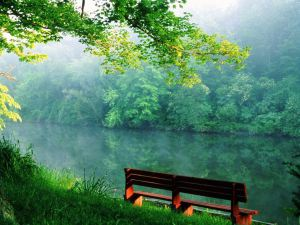 bench_by_the_river_wallpaper_q9r4k